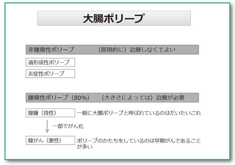 性 過 ポリープ 形成 大腸ポリープ ガイドライン一覧 日本消化器病学会ガイドライン